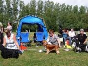 unghund_hane2010.jpg
